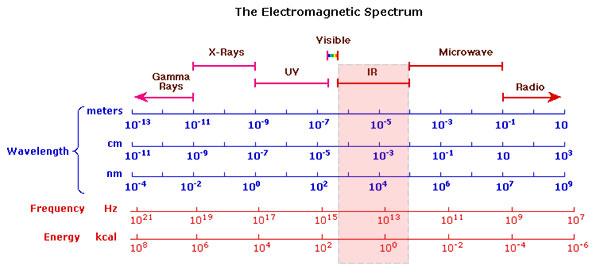 Ir Reflectography Colourlex